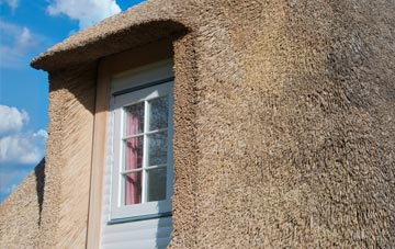 Dishes thatch roof disadvantages
